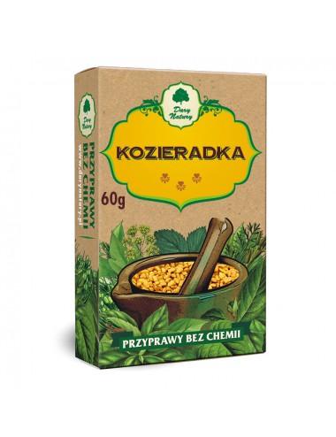 Tarczyca bajkalska (Obniża poziom cukru) korzeń (Polska) 100g Astron